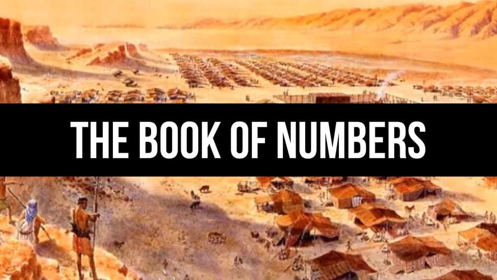 BS 105 Numbers